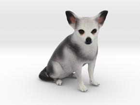 Custom Dog Figurine - Bug in Full Color Sandstone