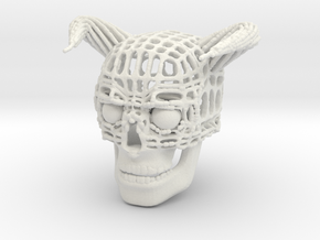 Skull of Devil in White Natural Versatile Plastic