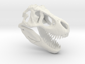 Tyrannosaurus Dinosaur Skull - T-Rex Skull 1:40 in White Natural Versatile Plastic