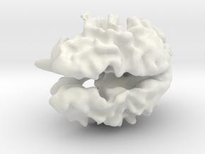Brain White Matter in White Natural Versatile Plastic