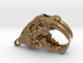 Skull of a saber-toothed Cat in Natural Brass