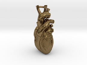 Anatomical Heart Pendant in Polished Bronze