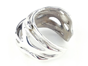 Tafone 111 Ring - Silver in Polished Silver