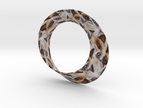 Grumpy Mobius Strip in Full Color Sandstone