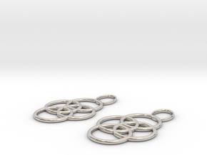 Earrings in Platinum