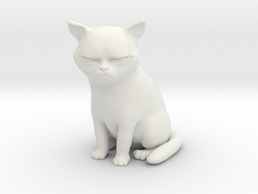 Grumpy Cat in White Natural Versatile Plastic