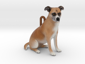 Custom Dog Ornament - Bandit in Full Color Sandstone