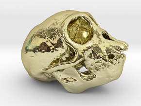 Spider Monkey Skull 50mm in 18K Gold Plated