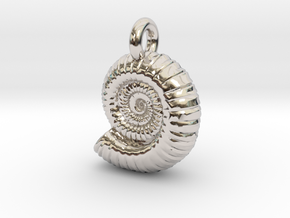 Ammonite Earing/Pendant  in Rhodium Plated Brass