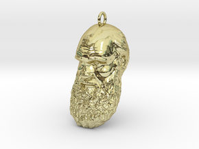 "Charles Darwin 1"" Head, Pendant, Ear Ring, Charm,  in 18K Gold Plated"