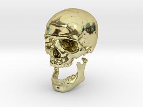 42mm 1.65in Human Skull Crane Schädel че́реп in 18K Gold Plated