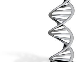 DNA schematic 20cm in Green Processed Versatile Plastic