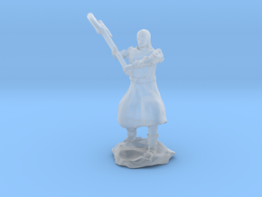 Human Fighter Noblewoman with Greataxe & Chainmail in Smooth Fine Detail Plastic