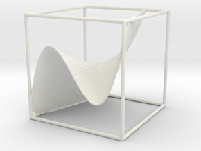 A 3d graph of cubic functions (with some curves) in White Natural Versatile Plastic: Medium