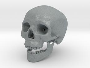 Human Skull -- Small in Polished Metallic Plastic