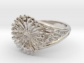 Gerbera Daisy Ring in Rhodium Plated Brass