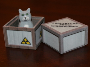 Schrödinger's Cat and Box in Full Color Sandstone