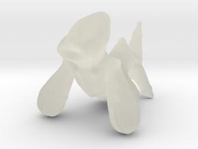 3DApp1-1427252634071 in Transparent Acrylic