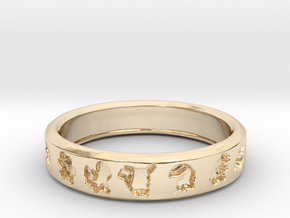 PokemonRing - Size 10 Test in 14k Gold Plated Brass