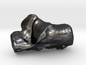 Human left calcaneus in Polished and Bronzed Black Steel