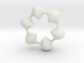 0059 AntisymmetricTorus (p=6.0) #008 in White Natural Versatile Plastic