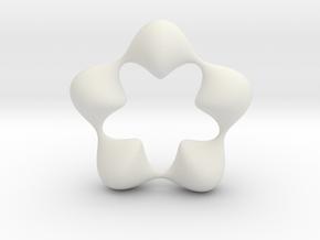 0058 Antisymmetric Torus (p=5.0) #007 in White Natural Versatile Plastic