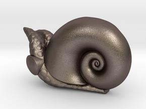 Powliphanta  in Polished Bronzed Silver Steel