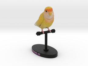 Custom Bird Figurine  - Charlie in Full Color Sandstone