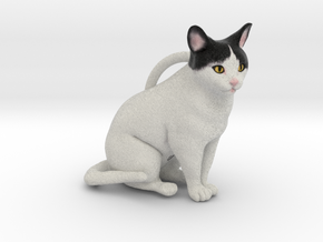 Custom Cat Ornament - Cole in Full Color Sandstone