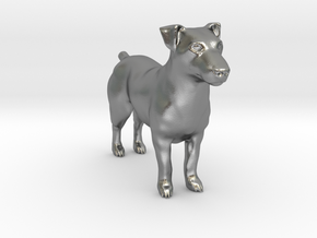 Jack Russell Terrier - Small in Natural Silver