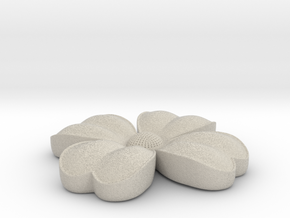 Flower coulomb in Natural Sandstone