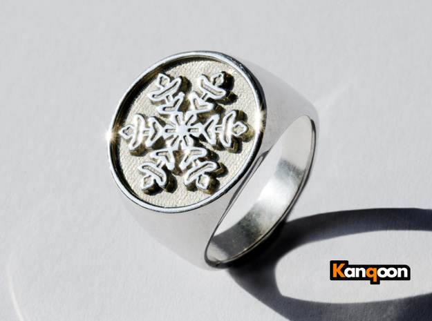 Snowflake - Signet Ring in Natural Silver: 6 / 51.5