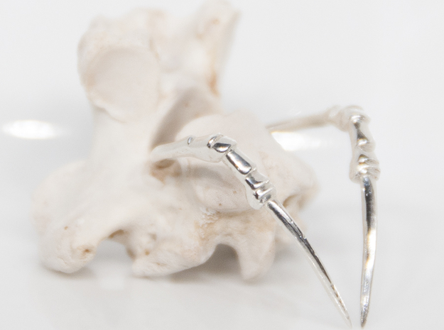 Talon Ring in Polished Silver: 6 / 51.5
