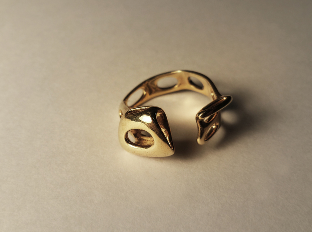 S3r026s7 GenusReticulum in Polished Brass