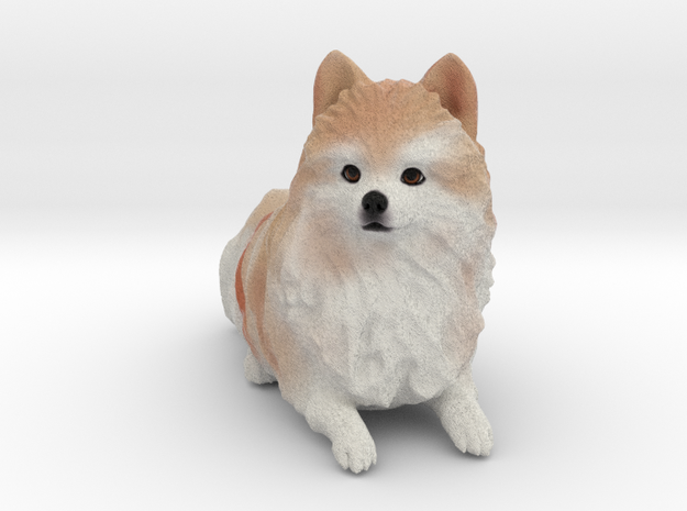 Custom Dog Figurine - Duncan in Full Color Sandstone