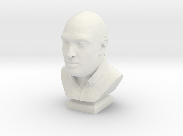 Human head bust in White Natural Versatile Plastic