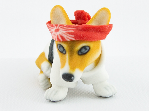 Karate Corgi  in Full Color Sandstone