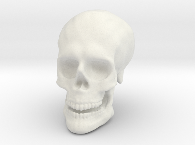 Solid Skull  in White Natural Versatile Plastic