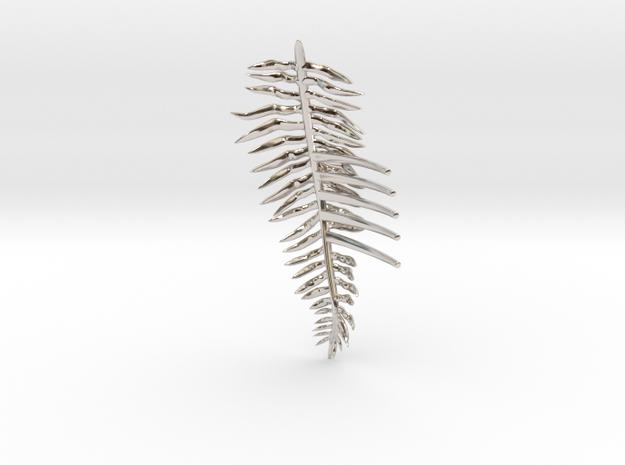 Sword Fern Comb