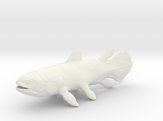 Coelacanth  in White Strong & Flexible