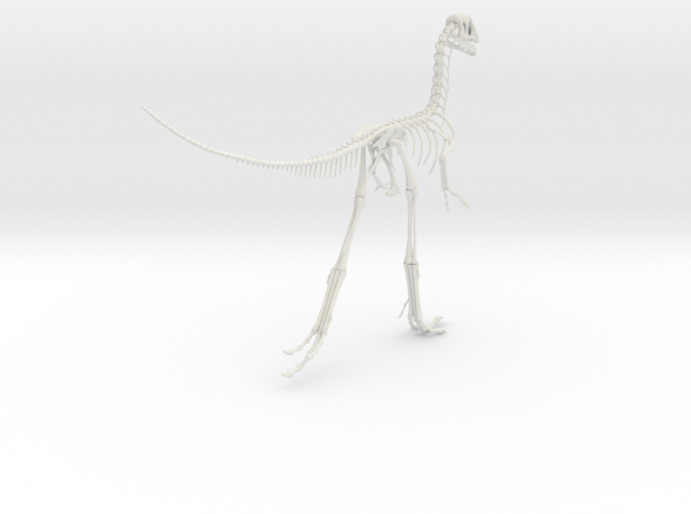 Compsognathus Skeleton (over 2-feet long)  in White Natural Versatile Plastic