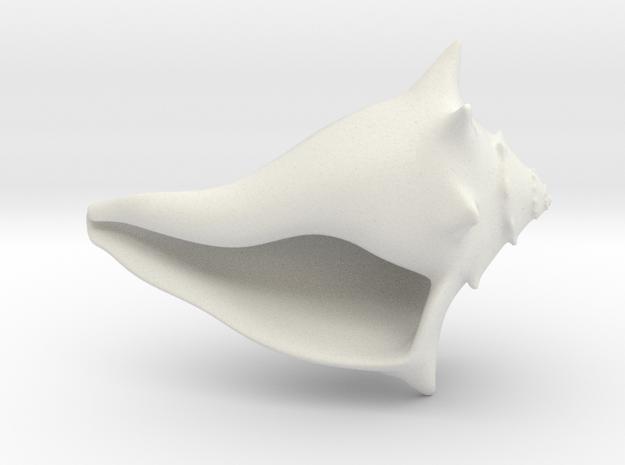Whelk Model in White Natural Versatile Plastic