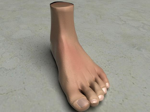 "Life Size Foot - 8.7"" - Solid 3d printed This is a rendering of the foot, not the actual product!"