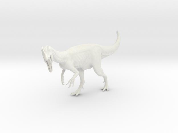 Dinosaur Dilophosaurus 1:15 v1 in White Natural Versatile Plastic