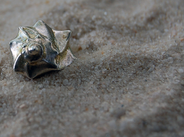 A Little Sea Shell Sculpture in Natural Silver
