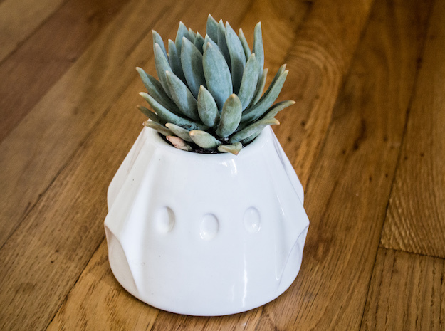 Dragon Succulent Pot in Gloss White Porcelain
