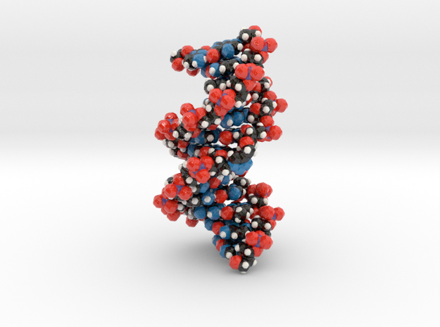 Triazole-linked DNA double helix 1.6x 3d printed
