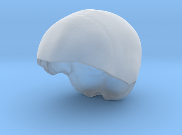 Subject 6f | SkullCap in Smooth Fine Detail Plastic