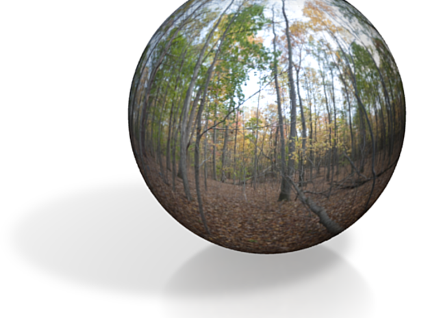 "Forest PanoSphere - upstate New York (1"") 3d printed"
