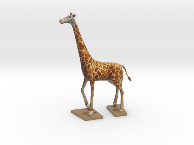 Giraffe...10% to unprivileged child